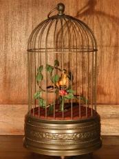 MMM Singvogel Vogel gelb